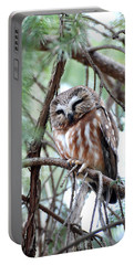 Northern Saw-whet Owl 2 Portable Battery Charger