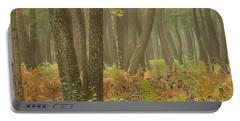 Oak Openings Fog Forest Portable Battery Charger