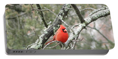 Observing Cardinal Portable Battery Charger