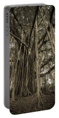 Old Banyan Tree Portable Battery Charger