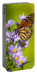Old Butterfly On Aster Flower Portable Battery Charger