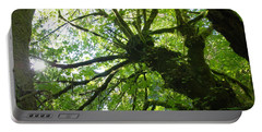Old Growth Tree In Forest Portable Battery Charger