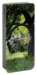 Old Texas Oak Tree Portable Battery Charger by Connie Fox