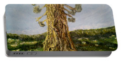 Old Tree In Spring Light Portable Battery Charger by Felicia Tica