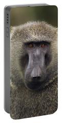 Olive Baboon Male Kibale Np Uganda Portable Battery Charger
