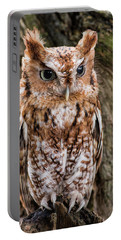 On Alert Portable Battery Charger