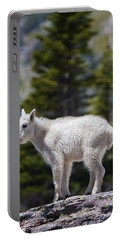 Goat Rocks Wilderness Photographs Portable Battery Chargers