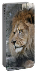 Portable Battery Charger featuring the photograph Onyo #11 by Judy Whitton