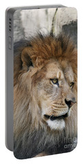 Portable Battery Charger featuring the photograph Onyo #4 by Judy Whitton