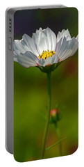 Portable Battery Charger featuring the photograph Open For All by Byron Varvarigos