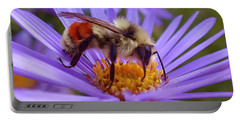 Orange-banded Bee Portable Battery Charger
