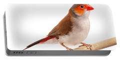 Orange-cheeked Waxbill Estrilda Melpoda Portable Battery Charger