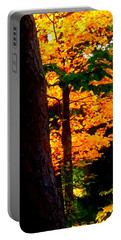 Portable Battery Charger featuring the photograph Orange Foliage by Denyse Duhaime