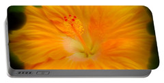 Portable Battery Charger featuring the photograph Orange Hibiscus Flower by Clare Bevan