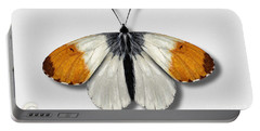 Orange Tip Butterfly - Anthocharis Cardamines Naturalistic Painting - Nettersheim Eifel Portable Battery Charger