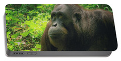 Portable Battery Charger featuring the photograph Orangutan by Dennis Baswell