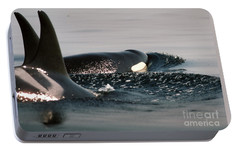 Portable Battery Charger featuring the photograph Orcas/killer Whales Off The San Juan Islands 1986 by California Views Mr Pat Hathaway Archives