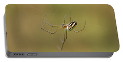 Portable Battery Charger featuring the photograph Orchard Spider by Greg Allore