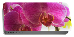 Portable Battery Charger featuring the photograph Orchid by Lingfai Leung