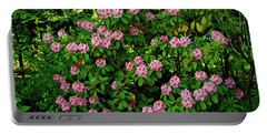 Oregon Azaleas Portable Battery Charger