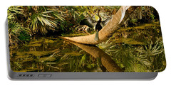 Oriental Darter Anhinga Melanogaster Portable Battery Charger by Panoramic Images