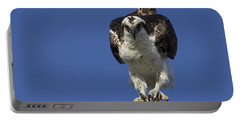 Osprey Photo Portable Battery Charger