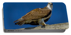 Portable Battery Charger featuring the photograph Osprey With Fish In Talons by Dale Powell