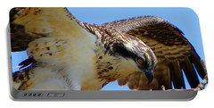 Portable Battery Charger featuring the photograph Osprey Youth by Dianne Cowen