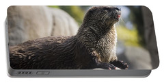 Otter Sun Bathing Portable Battery Charger