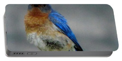 Our Own Mad Bluebird Portable Battery Charger by Betty Pieper