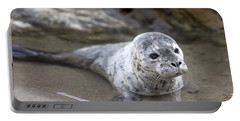 Portable Battery Charger featuring the photograph Out For A Swim by David Millenheft
