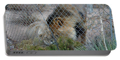 Out Of Africa Lions 4 Portable Battery Charger