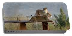 Out Of Africa Lions Portable Battery Charger