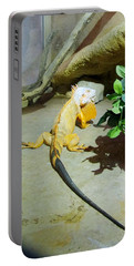 Out Of Africa Orange Lizard 2  Portable Battery Charger