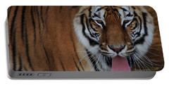 Out Of Africa  Tiger 2 Portable Battery Charger