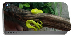 Out Of Africa Tree Snake Portable Battery Charger