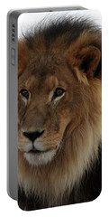 Out Ofafrica  Lion 4 Portable Battery Charger
