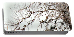 Portable Battery Charger featuring the photograph Out On A Limb First Snow by Barbara Chichester