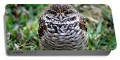 Owl. Best Photo Portable Battery Charger