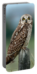 Owl See You Portable Battery Charger