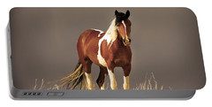 Paint Filly Wild Mustang Sepia Sky Portable Battery Charger