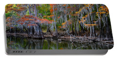 Painted Bayou Portable Battery Charger