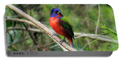 Portable Battery Charger featuring the photograph Painted Bunting Photo by Meg Rousher