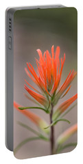 Painterly Paintbrush Portable Battery Charger