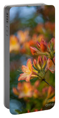 Painterly Rhodies Portable Battery Charger