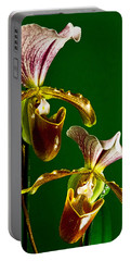 Portable Battery Charger featuring the photograph Pair Of Lady Slipper Orchids by Elf Evans