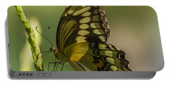 Portable Battery Charger featuring the photograph Palamedes Swallowtail by Jane Luxton