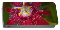 Portable Battery Charger featuring the photograph Passion Flower by Jane Luxton