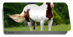 Pasture Portable Battery Charger