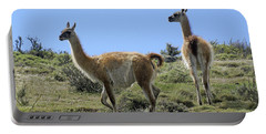 Patagonian Guanacos Portable Battery Charger by Michele Burgess